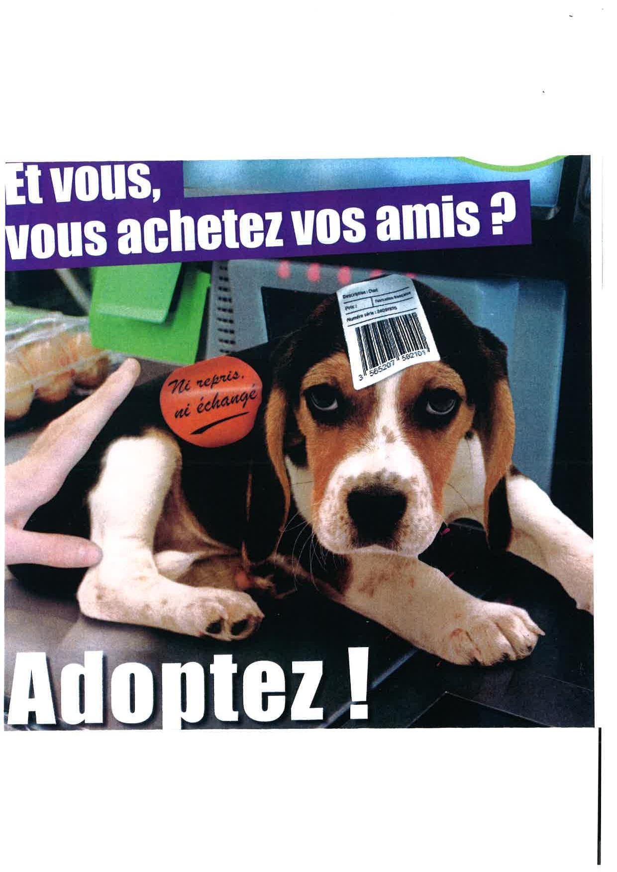 image-animaux-2-page-001